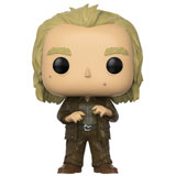 POP! HARRY POTTER PETER PETTIGREW