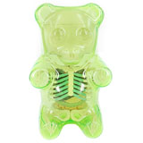 JASON FREENY GUMMI BEAR ANATOMY CLEAR GREEN