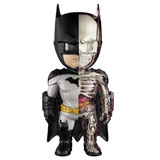 JASON FREENY X DC UNIVERSE 4D XXRAY BATMAN