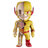 JASON FREENY X DC UNIVERSE XXRAY REVERSE FLASH