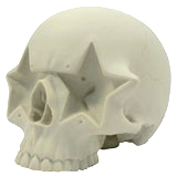 RON ENGLISH STAR SKULL BONE WHITE EDITION